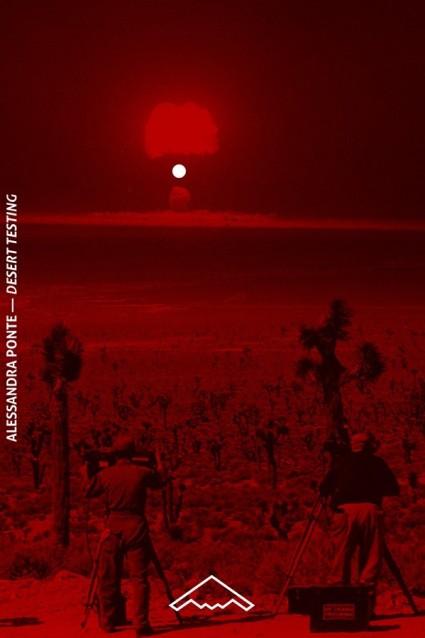 Le Lightning Field